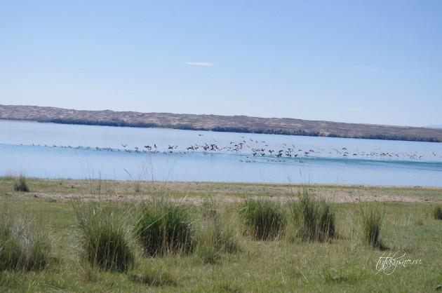 Фотографии озера Торе-Холь