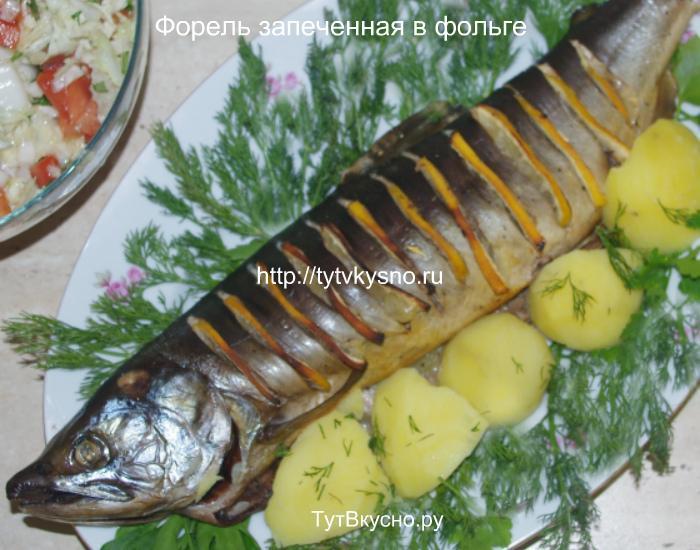 ф9 рецепт с фото: форель запеченная в духовке в фольге вкусный рецепт с лимоном