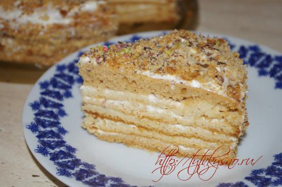 вкусный рецепт простого, легкого в приготовлении медового торта