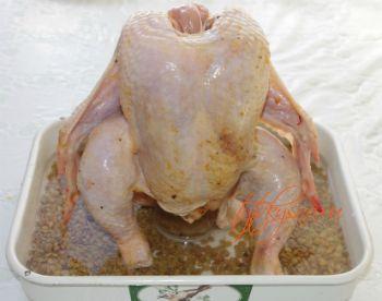 Курица запеченная на бутылке