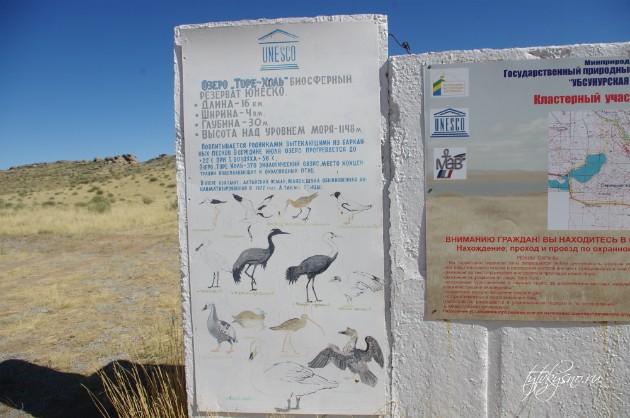 озеро Торе-Холь  расположенного на юге Тувы, на территории  государственного природного биосферного заповедника, на границе с Монголией.